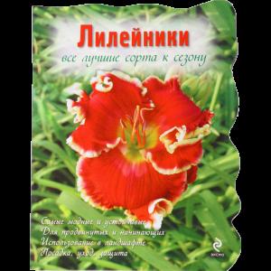 """Книга """"ЛИЛЕЙНИКИ"""""""