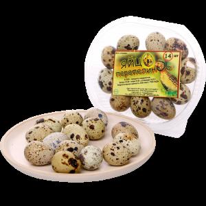 Яйцо перепелиное фасованное (14 штук)