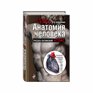 "Книга ""АНАТОМИЯ ЧЕЛОВЕКА: РУС-ЛАТ АТЛ"""