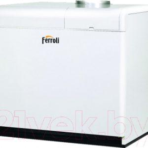 Газовый котел Ferroli Pegasus F3 N 187 2S