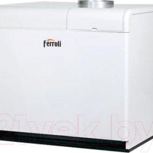 Газовый котел Ferroli Pegasus F3 N 289 2S
